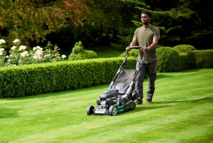 roller-lawnmowers-category